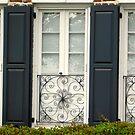 Charleston Windows     ^ by ctheworld
