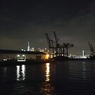 #Port, #crane, #ship, #industry, #sea, #cargo, #harbor, #dock, #shipping, #industrial, #night, #container, #water, #transportation, #transport, #cranes, #boat, #sky, #harbour by znamenski