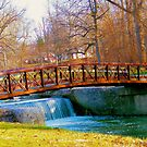 Footbridge In Highland Park ~ Kokomo, Indiana ~ USA by Marie Sharp