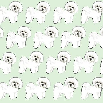 Bichon Firise dogs on mint by MagentaRose