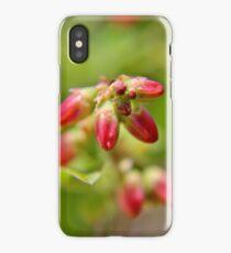 Wild Blueberry Buds iPhone Case/Skin