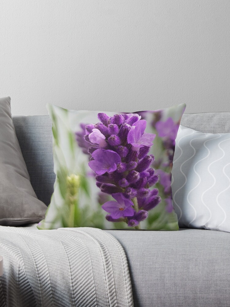 Lovely Lavender Flowers 6 - with purple and green by ellenhenry