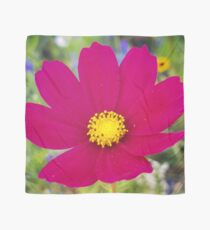 Flowers Go Wild in Wimbledon 6 - Cosmos in the field Scarf