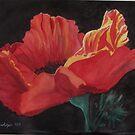 Poppy by Carolyn Bishop