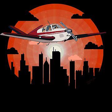 City Sightseeing Flight   Beech Bonanza V-Tail Airplane Design by RealPilotDesign