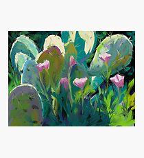 Cactus and California Poppies Photographic Print