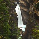 Johnston Canyon Lower Falls by Brandt Campbell