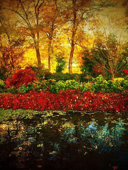 Autumn the Japanese Gardens 4 by Tara  Turner
