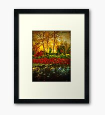 Autumn the Japanese Gardens 4 Framed Print