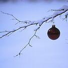 Snow ornament by Robin Nellist