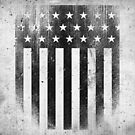 Distressed American Flag by Jason Matthew