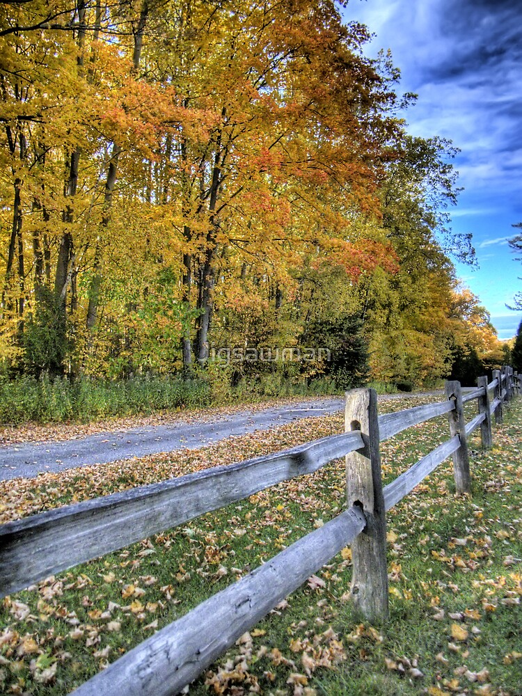 Country Road by Jigsawman