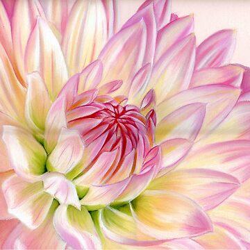 Pink Petals by valentina9