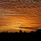 Golden sunset... von A1000WORDS
