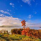 October morning by Veikko  Suikkanen