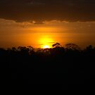 Amboseli African Sunset by citrineblue