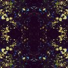 Midnight Secret Garden  by henryflorence