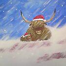 Merry Christmas! by Martin Williamson (©cobbybrook)