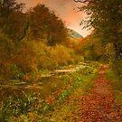 Autumnal Elegance by Tsitra