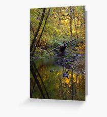 Whittaker Creek, autumn Greeting Card