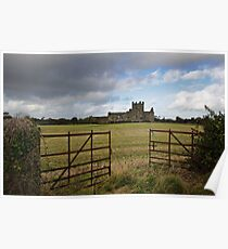 Dunbrody Abbey, County Wexford Poster