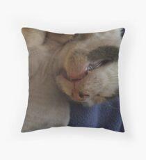 Kitty Teeth Throw Pillow
