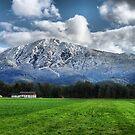 German Countryside III by Daidalos