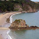 Beach at Tenby by susanmcm