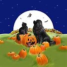 Halloween Newfie and Kitty by Patricia Reeder Eubank