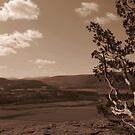 Vroman's Nose Sepia 2 by Bruce Haney