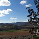 Vroman's Nose by Bruce Haney