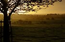 Buckinghamshire sunset by George Parapadakis (monocotylidono)