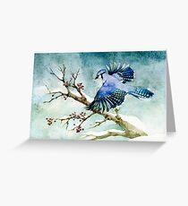 - Cyanocitta cristata - Greeting Card