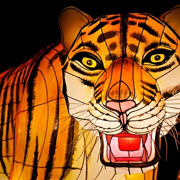 Tiger in the dark by FlatLandPrints