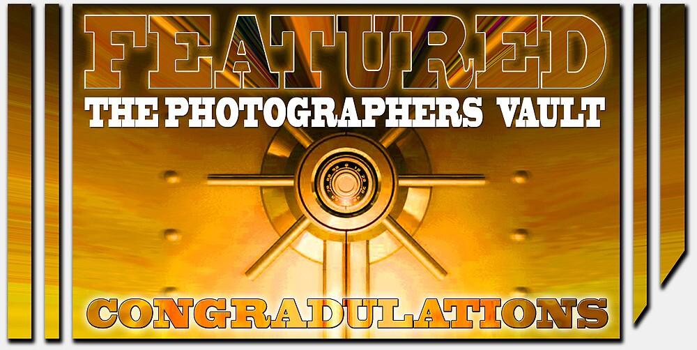 THE PHOTOGRAPHERS VAULT by netmonk