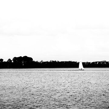 Sailing in the Park by LeonidasBratini