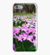 First Spring Wildflowers iPhone Case/Skin