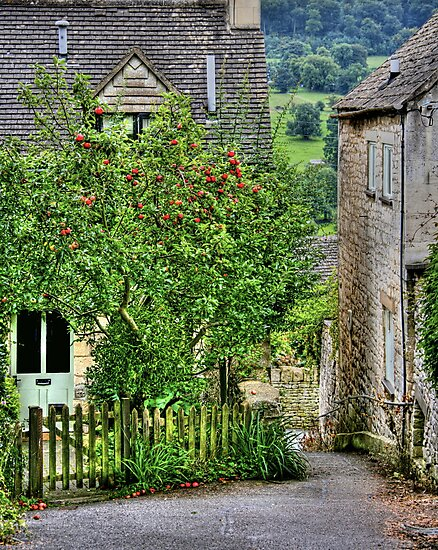 """Apple Tree Cottage"" by Bradley Shawn  Rabon"