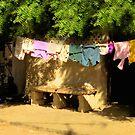 Dakar Washday by Wayne King