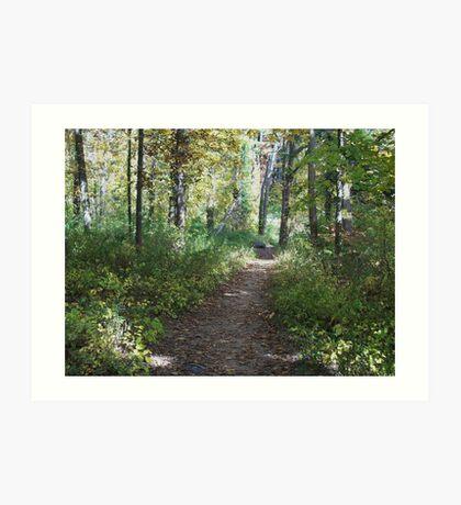 Peaceful Path Art Print