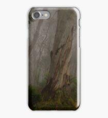 Barrington Tops # 1 - Barrington Tops National Park iPhone Case/Skin