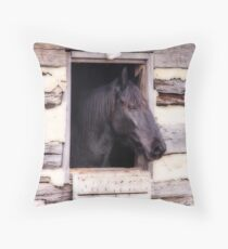 Beautiful Black Horse in the Barn Throw Pillow