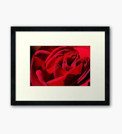 The Rose of Love Framed Print