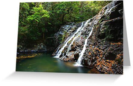 Kagoonya Falls by Jason Asher