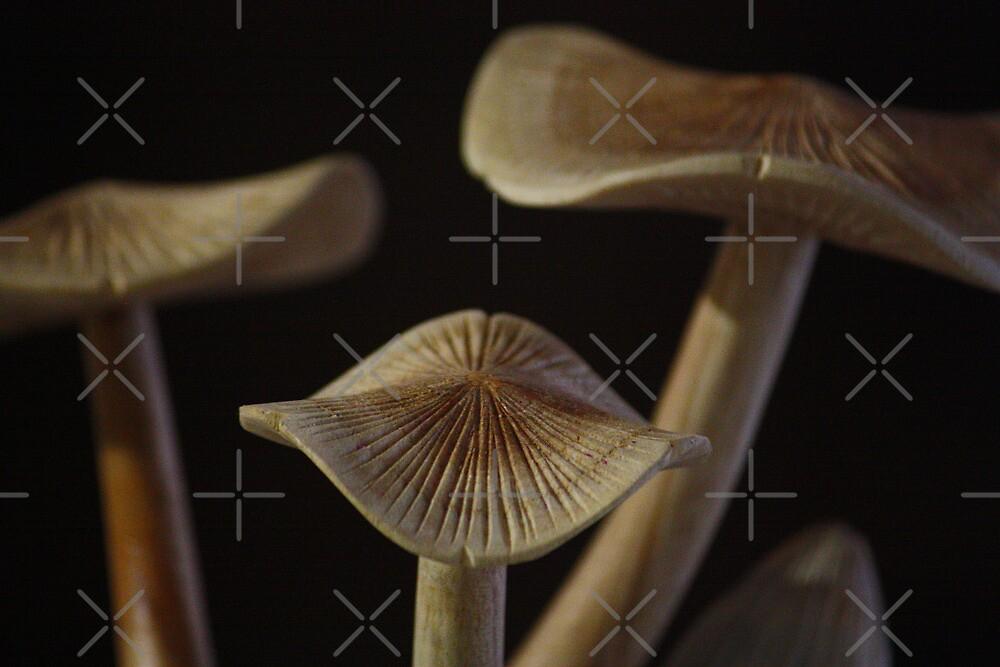 Fungal Sculpture by Lawrie McConnell