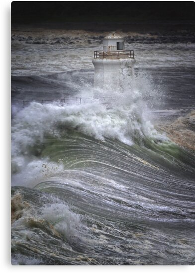 Brute Force, Wick Lighthouse, Caithness, Scotland by Martina Cross
