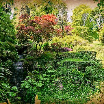 Batsford Arboretum by ScenicViewPics