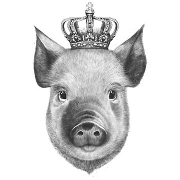 The King Pig by kodamorkovkart