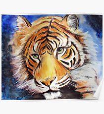 Tiger-eyes Poster