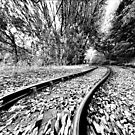 Track To My Dreams - An Illustration In Black And White by mcworldent